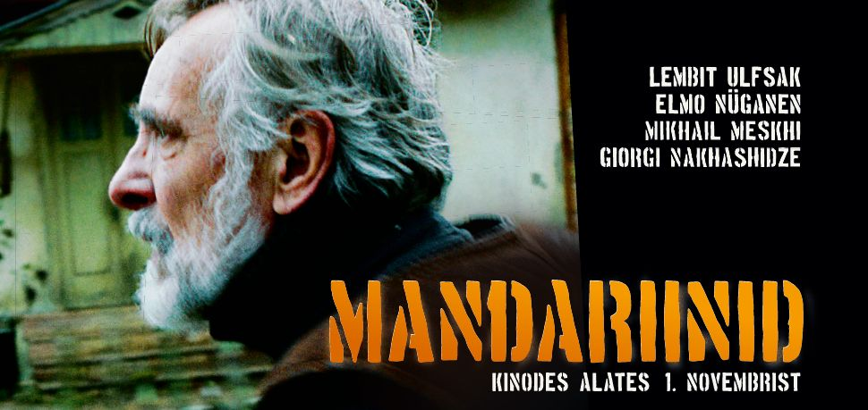 Mandariinid_veebipilt - Copy (1)